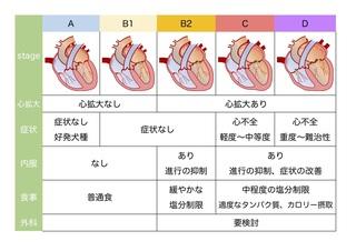 MR説明用Stage表.jpg